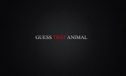 Guess That Animal screenshot 1/3