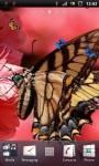 Brown Butterfly Live Wallpaper screenshot 1/3