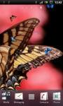 Brown Butterfly Live Wallpaper screenshot 3/3