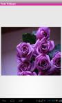 Rose Flower Wallpaper screenshot 1/6