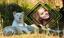 Lion Photo Frames Top screenshot 1/6
