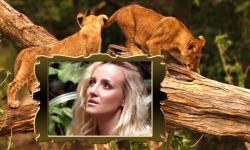 Lion Photo Frames Top screenshot 5/6