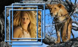 Lion Photo Frames Top screenshot 6/6