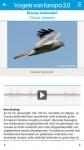 Vogels van Europa final screenshot 3/6