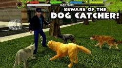 Stray Dog Simulator safe screenshot 4/6