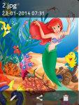 Ocean Life Fish Wallpapers screenshot 3/4