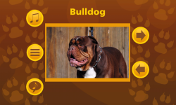 Learn More About Dog Breeds screenshot 2/6