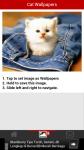 Free Cat Wallpapers screenshot 3/6
