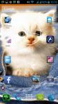Free Cat Wallpapers screenshot 6/6