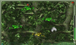 Crazy Jungle Game screenshot 4/4