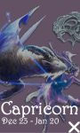 Capricorn 240x320 Touch screenshot 1/1