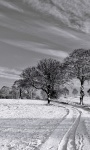 Free Amazing Winter Images Wallpaper screenshot 2/6