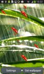 Rain Live Wallpapers screenshot 3/6