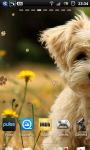 Cute Puppy dogs Live Wallpaper screenshot 4/6