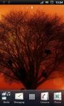 Yellow Evening Tree Silhouette Live Wallpaper screenshot 2/3