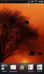 Yellow Evening Tree Silhouette Live Wallpaper screenshot 3/3