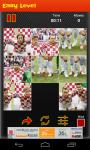 Croatia Worldcup Picture Puzzle screenshot 4/6