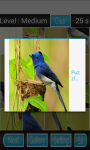 Bird Puzzle Games screenshot 3/3