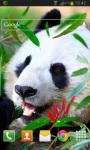 Panda Live Wallpaper HD screenshot 2/2