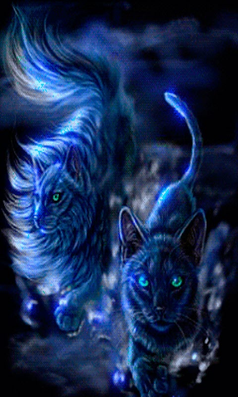 Free Blue Cat Live Wallpaper Apk Download For Android Getjar