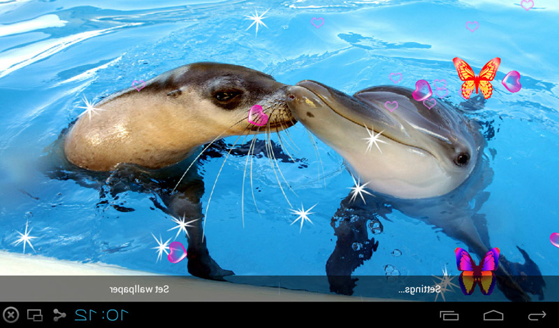 Free 3D Dolphin Live Wallpapers APK Download For Android  GetJar