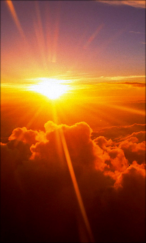 sun rise live wallpaper full version apk free