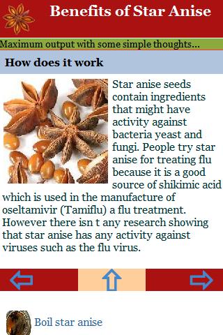 star anise benefits