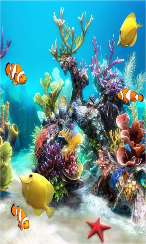 free aquarium live wallpaper frames apk download for android getjar. Black Bedroom Furniture Sets. Home Design Ideas