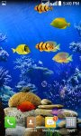Touch the  Fish  Live Wallpaper  Free screenshot 1/2