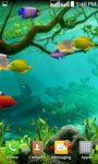 Touch the  Fish  Live Wallpaper  Free screenshot 2/2