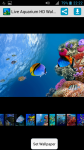 Free Live Aquarium HD Wallpaper screenshot 1/4